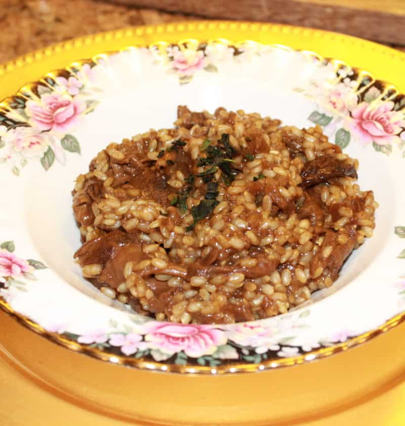 mushroom risotto in a plate