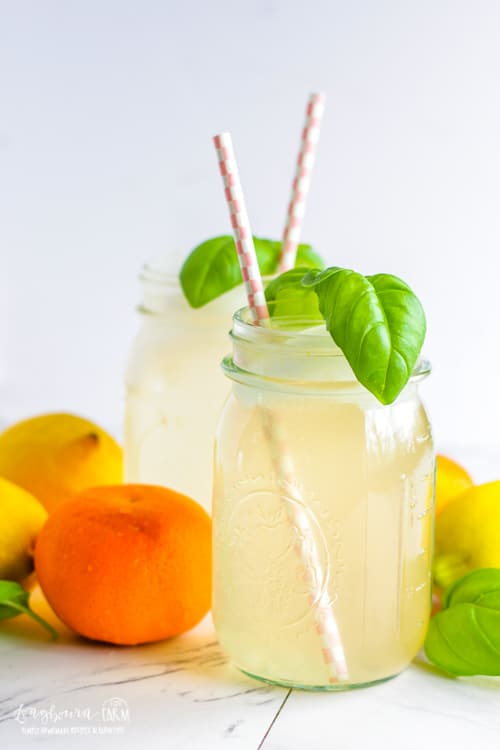 16 Refreshing Summer Drinks to Make for a Party 15